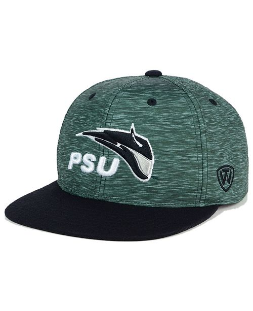Top of the World Portland State Vikings Energy 2-Tone Snapback Cap