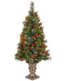 4' Crestwood Spruce Entrance Tree with 100 Clear Lights