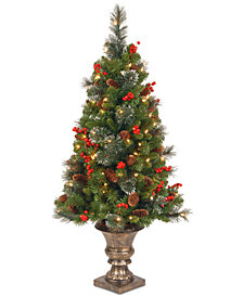 National Tree Company 4' Crestwood Spruce Entrance Tree with 100 Clear Lights