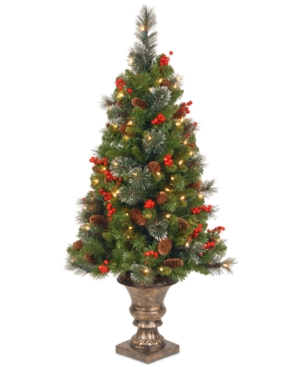 National Tree Company 4 Crestwood Spruce Entrance Tree with 100 Clear Lights
