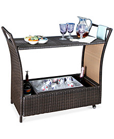 Stacy Outdoor Wicker Aluminum Bar Cart, Quick Ship
