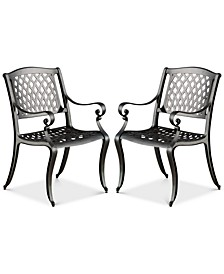 Orven Set of 2 Cast Aluminun Outdoor Chairs