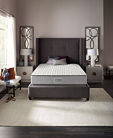 "CLOSEOUT! Beautyrest Sunnyvale 11"" Firm Mattress Set- Queen Split"