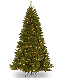 9' North Valley Spruce Hinged Tree With 700 Dual Color® Lights & PowerConnect™
