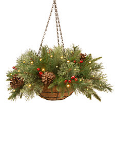 """National Tree Company 20"""" Feel Real® Colonial Hanging Basket with Pine Cones, Berries & 50 Battery-Operated LED Lights With Timer"""