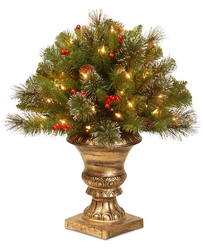 "National Tree Company 24"" Crestwood Spruce Porch Bush with  Clear Lights"