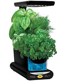 Aerogarden™ Sprout LED 3-Pod Smart Countertop Garden