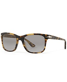 Polarized Sunglasses, PO3135S 55