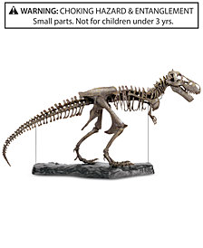 Discovery Kids 60-Pc. T-Rex 3-D Skeleton Puzzle.