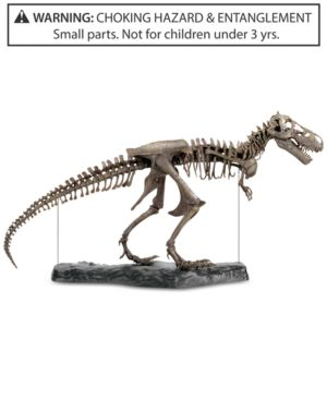 Discovery Kids 60-Pc. T-Rex 3-d Skeleton Puzzle. 5152195