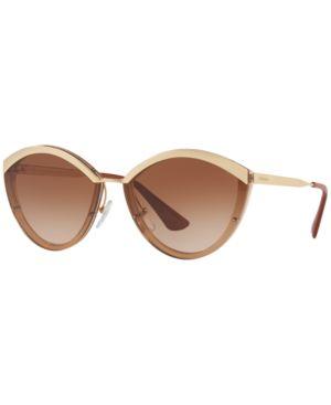 Plastic Cat-Eye Sunglasses in Brown