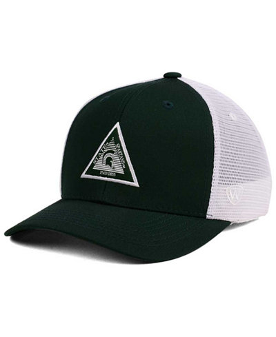 Top of the World Michigan State Spartans Present Mesh Cap