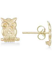 Owl Stud Earrings in 10k Gold
