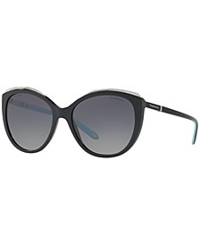 Polarized Sunglasses, TF4134B