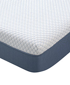 "Dream Science by Martha Stewart Collection 12"" Memory Foam Mattress, Quick Ship, Mattress in a Box- Queen"