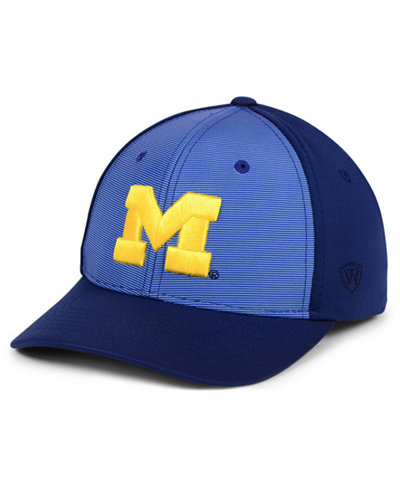Top of the World Michigan Wolverines Mist Cap