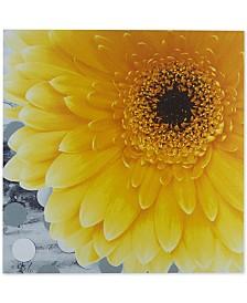 "Mi Zone Vibrant Yellow 24"" x 24"" Gel-Coated Canvas Print"