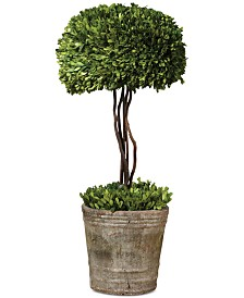 Uttermost Preserved Boxwood Tree Topiary