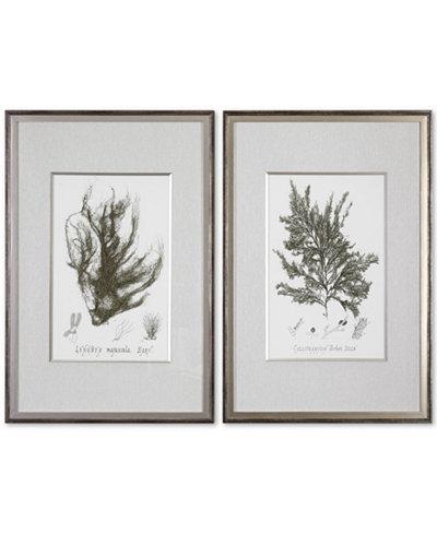 Uttermost Sepia Seaweed 2-Pc. Printed Wall Art Set