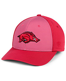 Top of the World Arkansas Razorbacks Mist Cap