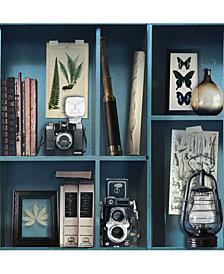 Graham & Brown Curiosite Biblio Blue Wallpaper