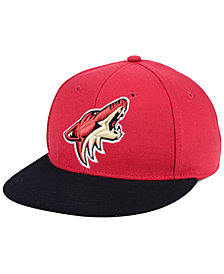 adidas Arizona Coyotes Basic Fitted Cap
