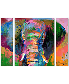 Richard Wallich 'Elephant 2' Large Multi-Panel Wall Art Set