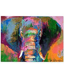"""Richard Wallich 'Elephant 2' 35"""" x 47"""" Canvas Art Print"""