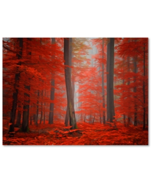 Philippe Sainte-Laudy Speaking of Tongues 22 x 32 Canvas Wall Art