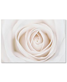 "Cora Niele 'Pure White Rose' 30"" x 47"" Canvas Art Print"