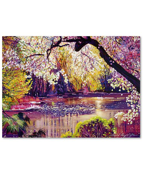 "Trademark Global David Lloyd Glover 'Central Park Spring Pond' Canvas Art - 47"" x 35"""