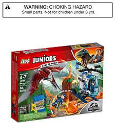 LEGO® Juniors Pteranodon Escape 10756