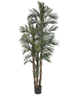 Nearly Natural 6 Artificial Robellini Palm Tree