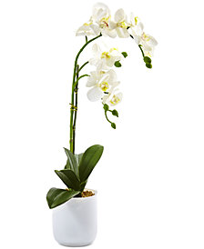 Nearly Natural Phalaenopsis Orchid in Frosted Glass