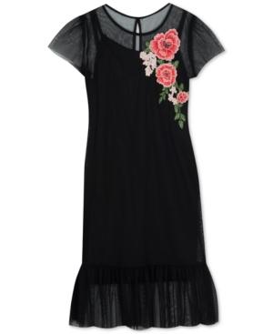 1920s Children Fashions: Girls, Boys, Baby Costumes Rare Editions Big Girls Floral Applique Mesh Dress $47.60 AT vintagedancer.com