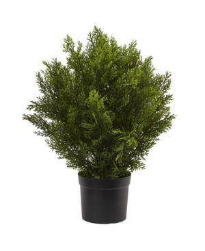 Nearly Natural 2' Cedar Indoor/Outdoor Artificial Bush 6496885