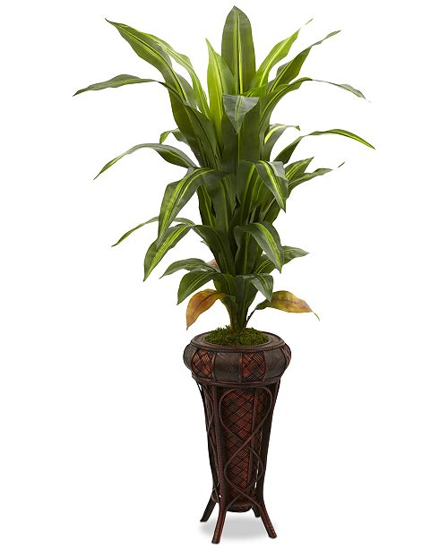 """Nearly Natural 57"""" Dracaena Real Touch Artificial Plant in Stand"""
