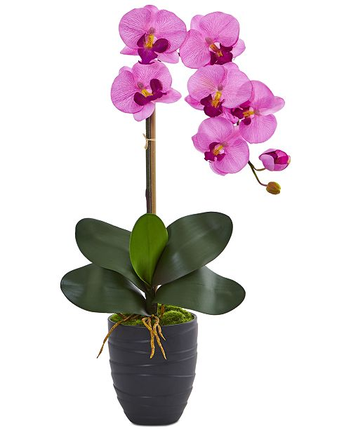 Nearly Natural Phalaenopsis Orchid Artificial Arrangement in Black Vase