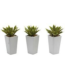 3-Pc. Mini Agave Artificial Plant Set in White Planters