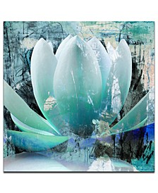 'Painted Petals XXIV' Canvas Art Print
