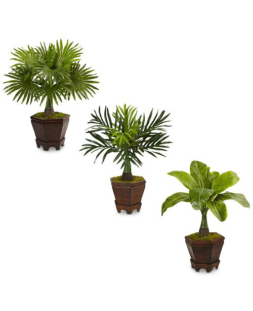 """Nearly Natural 3-Pc. 16.5"""" Assorted Mini Palm Artificial Tree Set in Planters"""