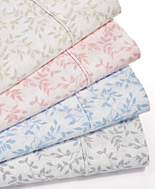 Norvara 500 Thread Count 6-Pc. Printed Sheet Sets