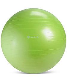 Gaiam Stability Ball