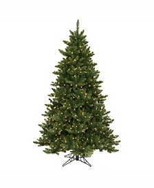 6.5' Camdon Fir Artificial Christmas Tree with 600 Clear Lights
