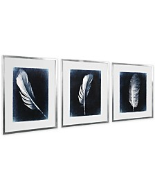 Uttermost Inverted Feathers Prints, Set of 3