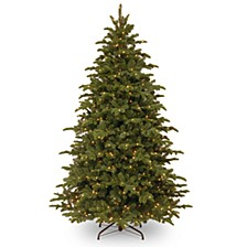 """National Tree 7 .5' """"Feel Real"""" Mountain Noble Blue Spruce Hinged Tree with 750 Clear Lights"""