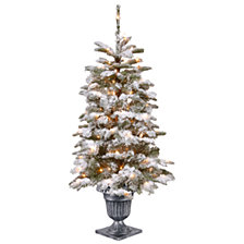 National Tree Company 4' Feel Real®  Snowy Camden Entrance Tree in Silver Brushed Urn with 100 Clear Lights