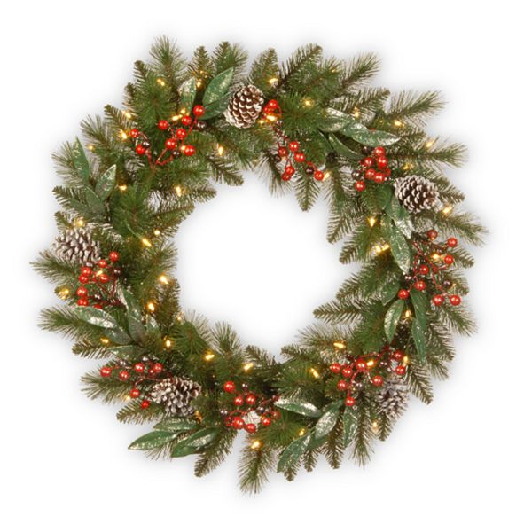 """National Tree Company 24"""" Frosted Pine Berry Collection Wreaths with Cones, Red Berries, Silver Glittered Eucalyptus Leaves & Warm White Battery Operated LED Lights with Timer"""