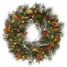 "National Tree Company 24"" Wintry Pine Wreath with Cones, Red Berries, Snowflakes with 50 Battery Operated soft White LED Lights"