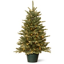 3' Everyday Collections Small Tree in Green Pot with 100 Clear Lights